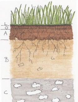 Zur Messung der Bodenqualität ist der Boden in Horizonte eingeteilt
