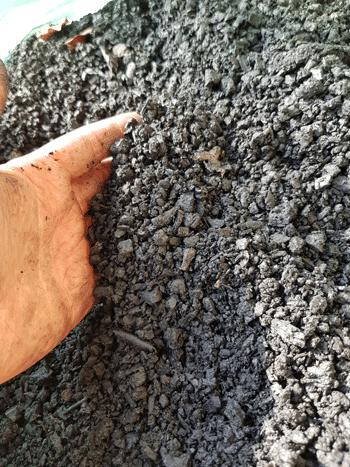 Pflanzkohle als Teil der Schwarzerde verbessert die Bodenqualität